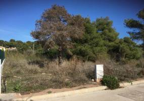 Jávea- Costa Blanca- Spain, ,Plot,Sale,1377